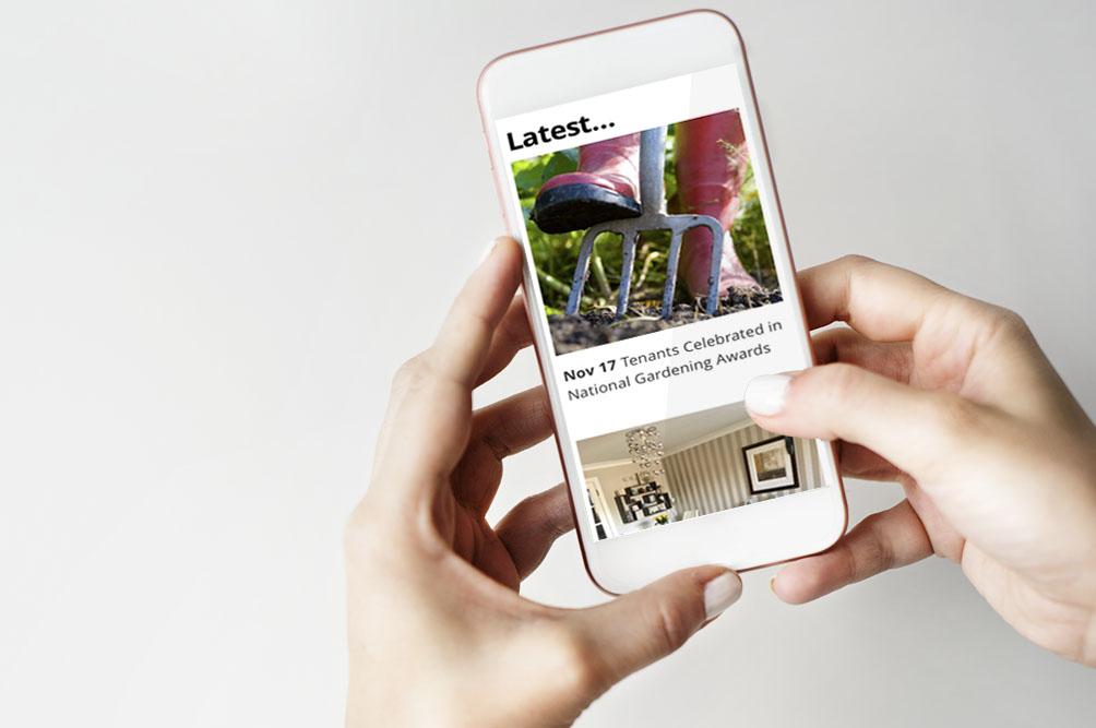 designing websites for mobile phones